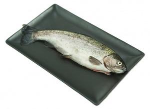Rybia farma- Gerlachov, pstruhy